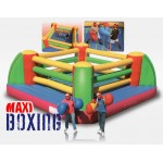 BOXING WITH GLOVES MT. 7 X 7 X 2.5 (H)