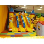 SLIDE BIG CARTOON MT. 5 X 9 X 6.5 (H)