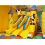 SCIVOLO BIG CARTOON MT. 5 X 9 X 6,5 (H)