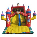 RUTSCHE MICKEY MOUSE MT. 6 X 8 X 6,6 (H)